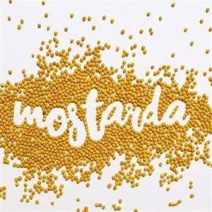 MOSTARDA EM GRÃO 100g (Cód  1303)